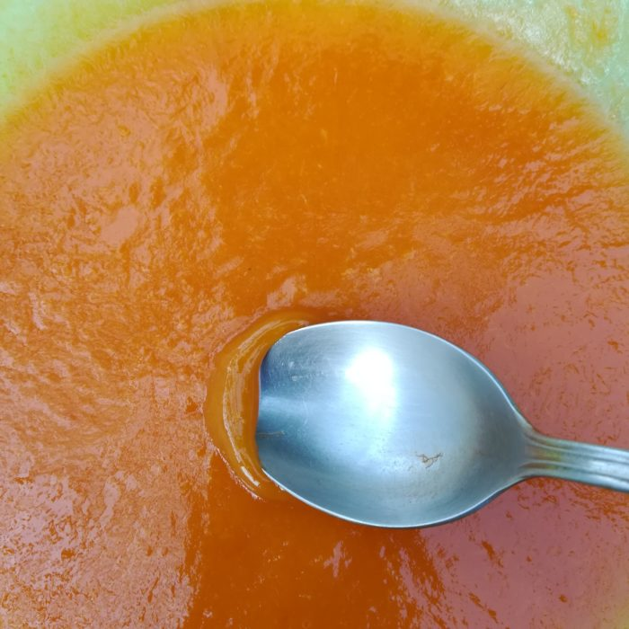 nouvelle recette de sorbet à l'abricot