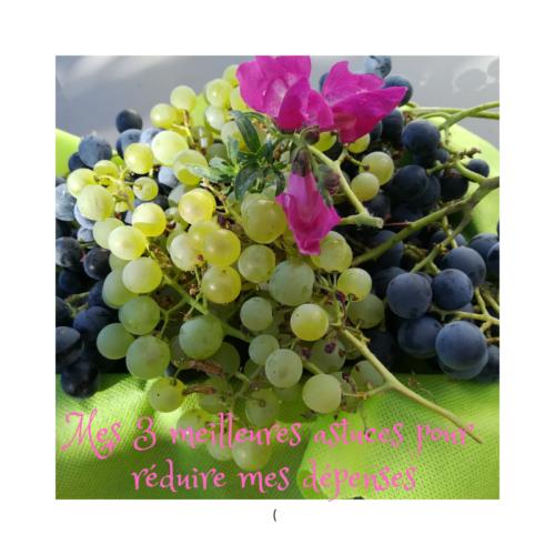 notre raisin pour réduire dépenses